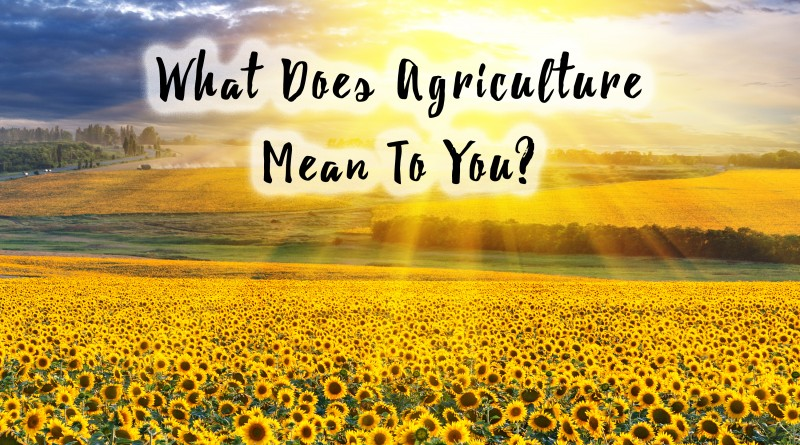 What Agriculture Means To You- Around The World Edition!
