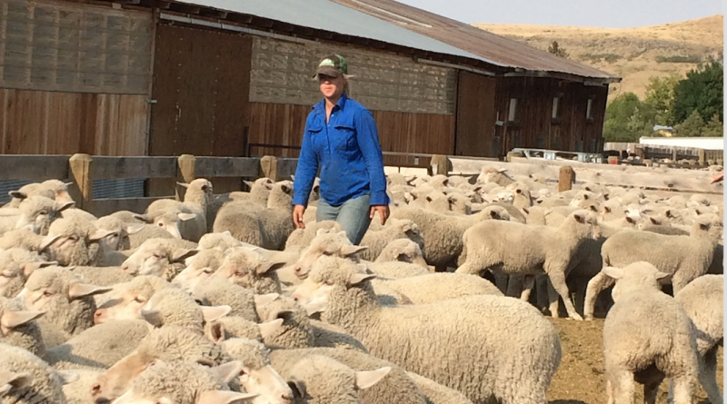 Meet CAEP Agriculture Trainee Hester Susanna van Zyl from South Africa