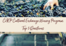 Top Five Questions About CAEP Cultural Exchange and Enology Program