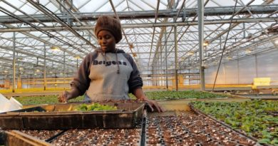 From Kenya to the United States, Meet CAEP Horticulture Exchange Visitor Ivy Gathoni