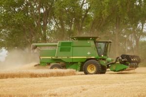 #caepharvest