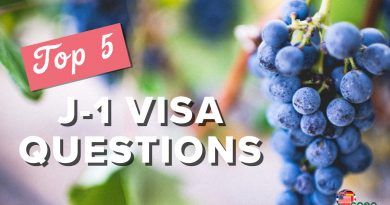 Top Five Questions About the J-1 Visa and Enology Program
