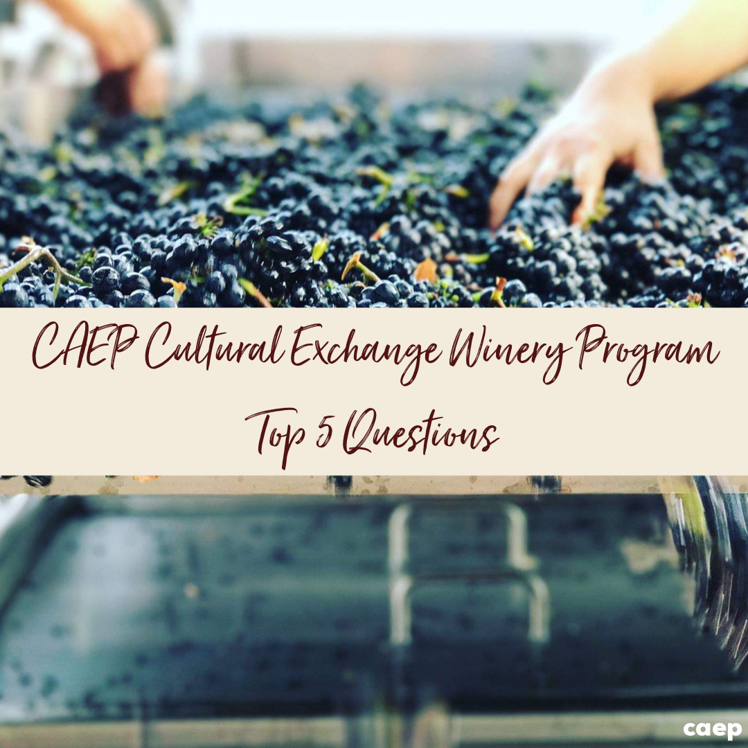 Cultural Exchange Winery Program